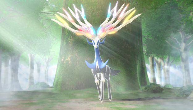 Pokemon X e Y in 3D: i due leggendari sono Xerneas e Yveltal [VIDEO]