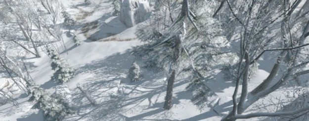 Assassin's Creed 3: neve