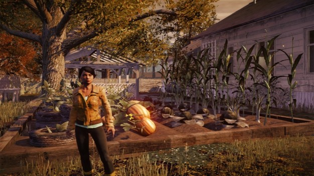 Personaggio di State of Decay