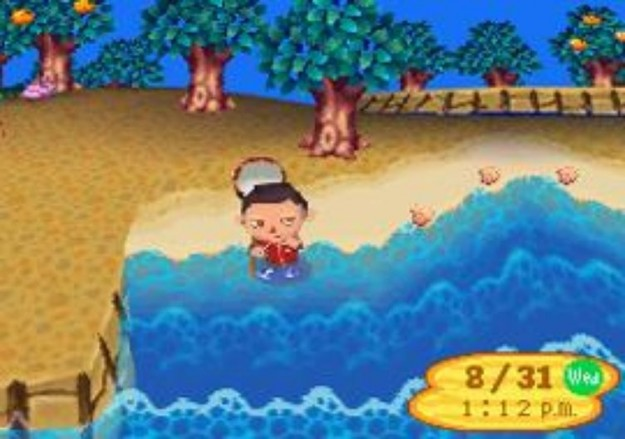 Grafica di Animal Crossing Wild World