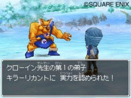 Dragon Quest IX new_03