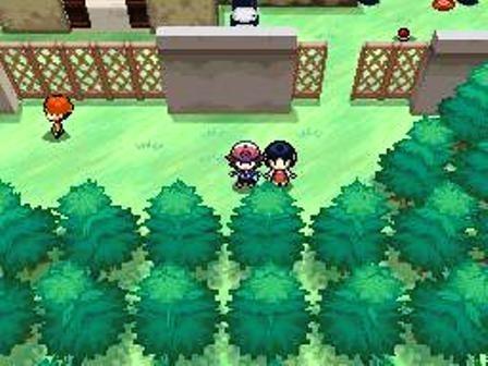 pokemon bianco e nero scimmie