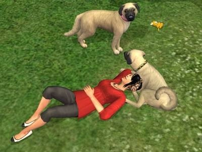 the sims 3 generations sims con cane