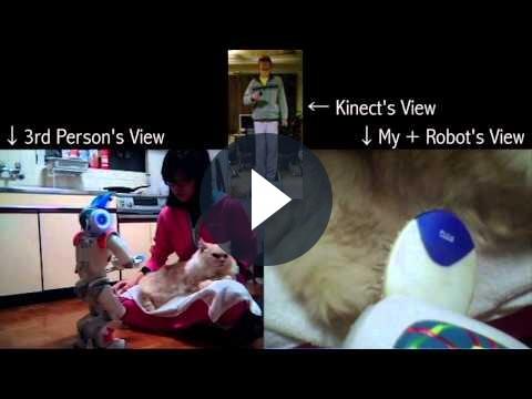 Con Kinect e Nintendo Wii un robot può accarezzare un gatto